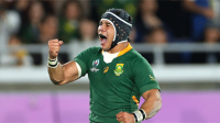 Cheslin Kolbe grapples top 14 player of the year award